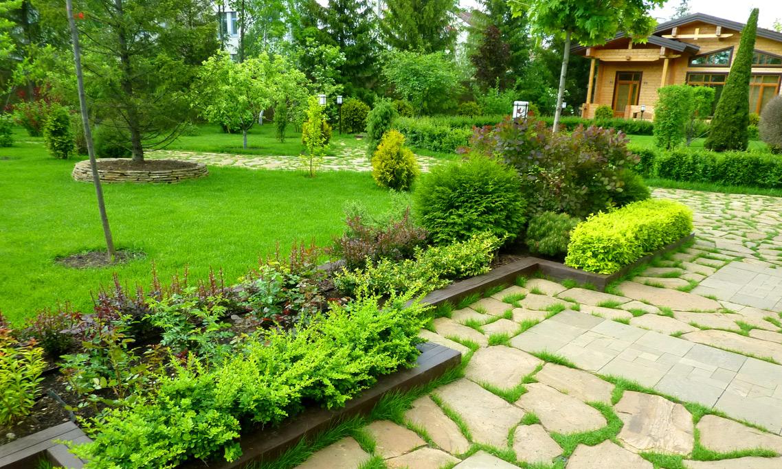 Обновление запущенного сада