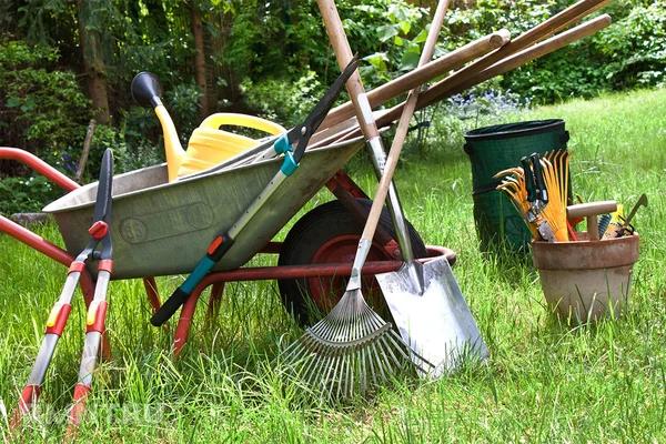 Минимальный набор инструментов для ухода за садом